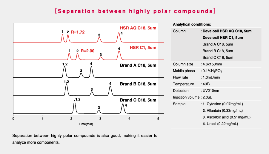 Develosil-HPLC-Column-C18-Highly-polar-compounds