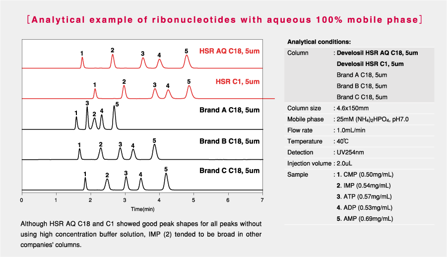 Develosil-HPLC-Column-C18-Ribonucleotides